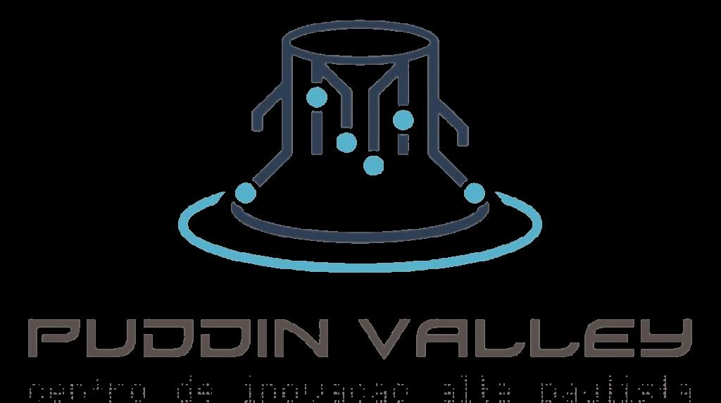 Puddin Valley DTX Bluefields Aceleradora. Transformação digital